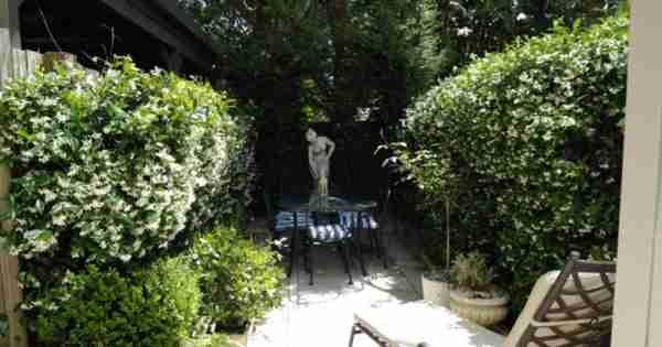 Mosman的宁静和生态友好的绿色家园
