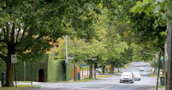 社区:蒙特阿尔伯特保留了旧学校的魅力